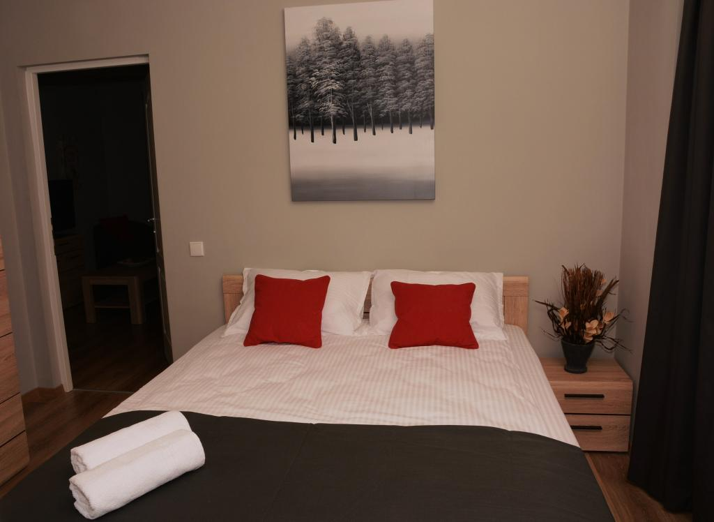 cluj city apartments red hotel serviced apartment cluj napoca transylvania
